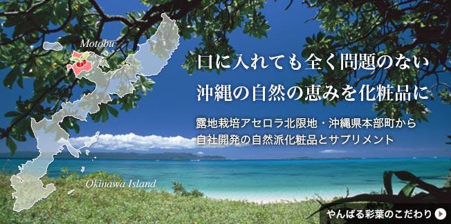 口に入れても全く問題のない沖縄の自然の恵みを化粧品に