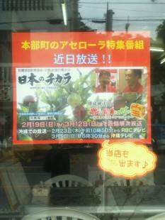 日本のチカラポスター